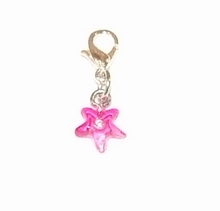 Flying charm kunststof sterretje roze